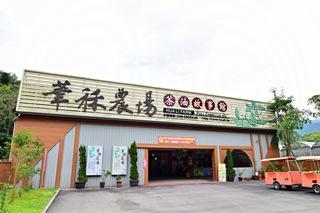 華秝農場。茶油故事館