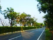 台南2日農村生態風光遊