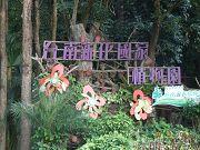 台南新化之旅