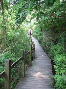 半屏山自然公園