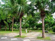 旗楠生態自然公園
