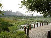 洲仔濕地公園