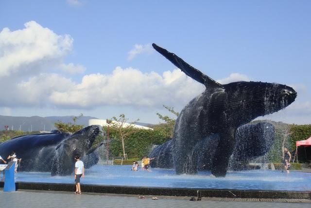 國立海洋生物博物館-May