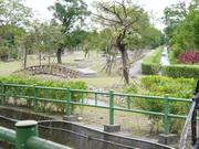 初英親水生態公園