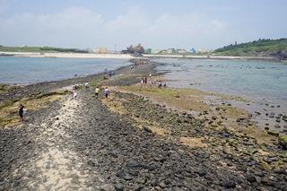 菊島地質生態之旅