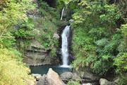 美麗達觀山(拉拉山)自然保護區一日遊