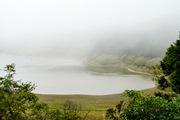 【台灣觀光巴士】宜蘭太平山自然之旅