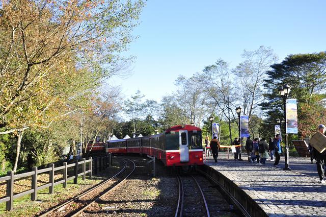 阿里山森林鐵路-李維城
