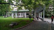 復興公園。泡腳池園區