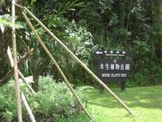 綠林生態漫步遊