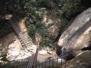 【親子旅遊】探索森林生態。樂園之旅